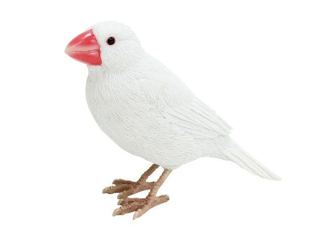 文鳥マグネットクリップ