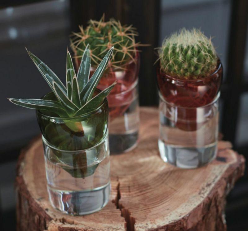 水耕栽培用花瓶