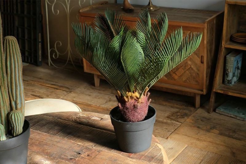 ソテツの人工観葉植物