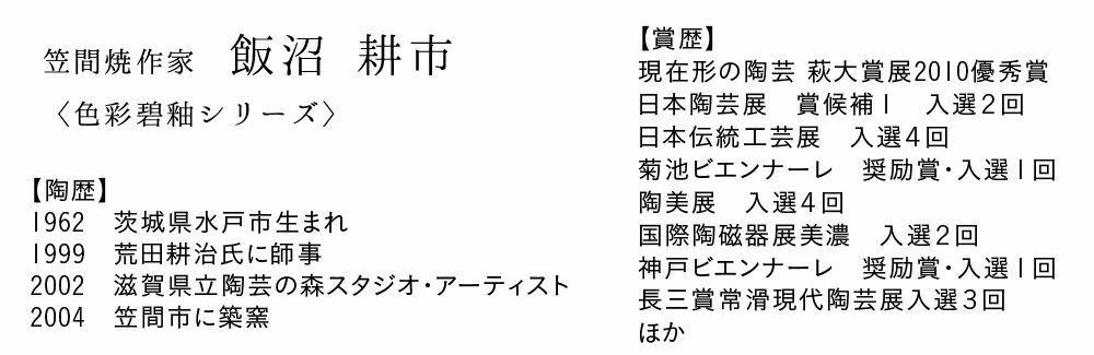 笠間焼【飯沼耕市】色彩碧釉 飯碗(小)
