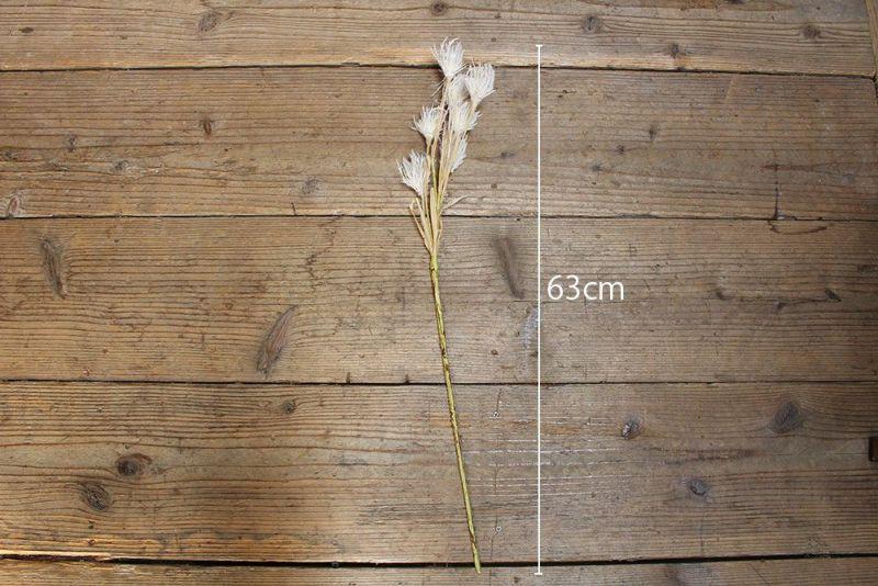 パンパスグラス造花