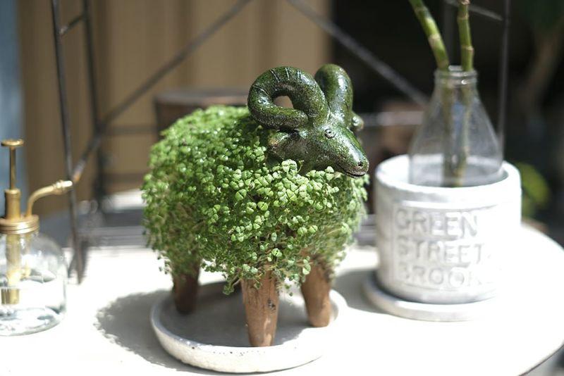 羊のグリーンインテリア
