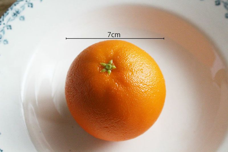オレンジ食品サンプル