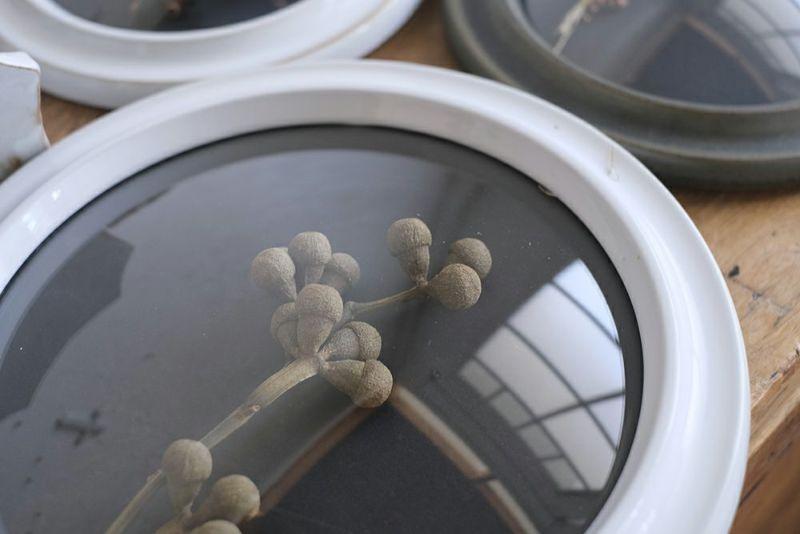 陶器の壁掛けディスプレイケース